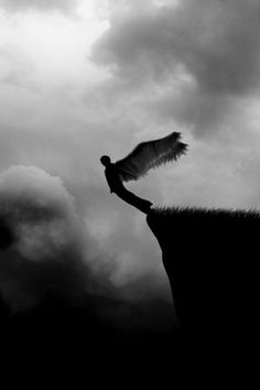 "((Open RP)) I stand at the edge of the cliff, close my eyes, and fall off the cliff. About halfway down I open my eyes and spread my wings. I come screaming back up to the top of the cliff to find that someone is standing there, mouth open with wide eyes. ""You okay?"" I ask."