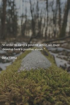 """""""In order to carry a positive action we must  develop here a positive vision. """"  Dalai Lama"""