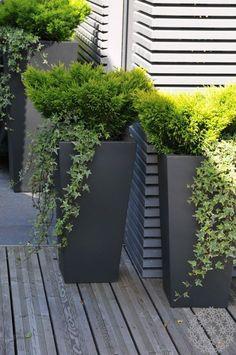New backyard patio area and pergola roof Puutarhasuunnit . Patio Deck Designs, Backyard Garden Design, Terrace Garden, Garden Spaces, Lawn And Garden, Patio Pergola, Pergola With Roof, Backyard Patio, Backyard Landscaping