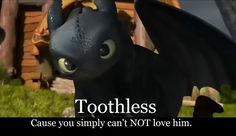 So true:) it's a double negative, but how can you not love him? Toothless is adorable! :)