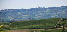 Langhe, provincia di Cuneo