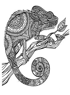 Free coloring page coloring-adult-cameleon-patterns. A magnificien cameleon to color, drawn with zentangle patterns