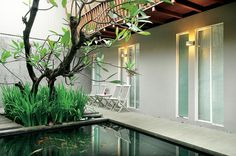 Selain kola, pohon kamboja dan tanaman irish meneduhkan suasana kantor. Di depan kolam terdapat teras dengan dua kursi dan satu meja kayu yang dicat.