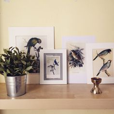 home Gallery Wall, Vase, Home Decor, Decoration Home, Room Decor, Vases, Home Interior Design, Home Decoration, Interior Design