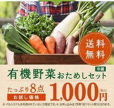 有機野菜おためしセット(冷蔵) たっぷり8点 お試し価格1,000円(税込)