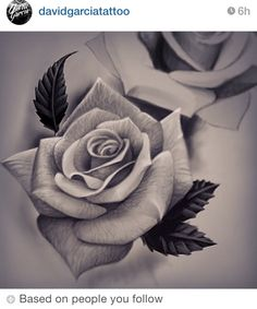 Can see the silkyness of the rose petals I this drawing.want that realistic feature to be captured in rose tattoo Rose Drawing Tattoo, Tattoo Sketches, Tattoo Drawings, Neue Tattoos, Body Art Tattoos, Cool Tattoos, Tatoos, Flower Tattoo Designs, Flower Tattoos