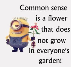 Funny Minions, common sense, flower. 。◕‿◕。 See my Despicable Me  Minions pins https://www.pinterest.com/search/my_pins/?q=minions