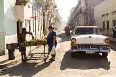 7 elementos que no pueden faltar en la vida cotidiana… http://www.cubanos.guru/7-elementos-no-pueden-faltar-la-vida-cotidiana-del-cubano/