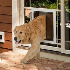 Shop for Fully Automatic Power Pet Door for Dogs and Cats. Get free delivery On EVERYTHING* Overstock - Your Online Dog Supplies Store! Sliding Glass Dog Door, Sliding Glass Door Replacement, Hollow Metal Doors, Dog Door Flaps, Every Dog Breed, Pet Gate, Pet Door, Dog Rooms, Patio Doors