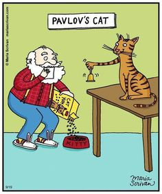 Truth: Pavlov started his experiments with cats, but they were less than cooperative... so he switched to dogs. So much for sticking with your original hypothesis!
