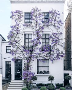 Dont you just love wisteria? Credit to : Flowery house of South Kensington 💜 London, UK. Photo by Shared with thanks by Help Sales Marketing Exterior Design, Interior And Exterior, Facade Design, South Kensington London, Kensington House, Decoration Plante, Flowers Decoration, Sparks Joy, Exterior Doors