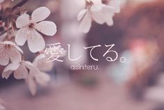 I love you. #Japanese #Learn #Phrases