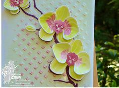 Climbing Orchid, Stampin' Up! Colour INKspiration, CI#13 With a bow on top