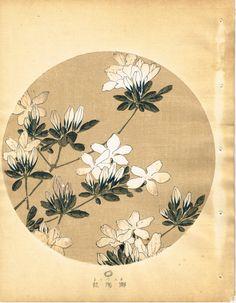 """Japanese antique woodblock print Ito Jakuchu """"Azalea from Jakuchu gafu"""""""