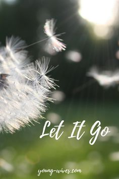 Let It Go // young-wives.com Don't let your past get in the way of your future - as a woman, as a wife, as a mama. Click through to learn how the Bible teaches us to Let It Go