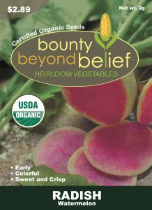 Why You HAVE to Grow Watermelon Radishes this Year | BBB Seed
