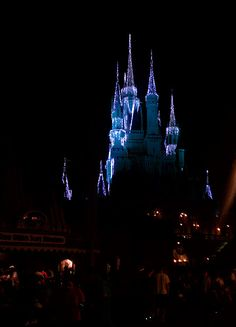 Christmas Lights at the Magic Kingdom