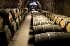 Sherry barrels - everyone should try one of Spain's most under-rated drinks.