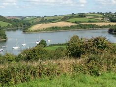 The Percuil river, St just in Roseland #cornwall Peace and tranquility, one of my favourite spots