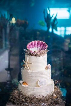 Photo from Charleston Revolution Wedding Tour at South Carolina Aquarium. Photography by Molly Joseph Photography