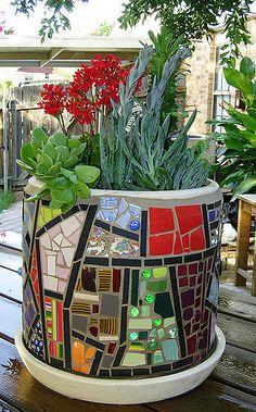 planter w-plants3 | mosaic planter with succulents June 08 | Samra Thompson | Flickr