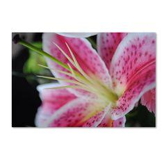 Monica Fleet ' Flower' Art (12 x 19 Wrapped art)