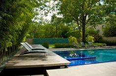 piscina – Paisagismo Legal