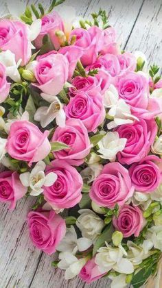New Birthday Flowers Bouquet Beautiful Roses 21 Ideas All Flowers, Amazing Flowers, Beautiful Roses, Beautiful Flowers, Purple Plants, Pink Plant, Purple Roses, Pink Purple, Bouquet Champetre