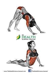 © Sasham | Dreamstime.com - Fitness-Yoga exercising. Indian push-ups. Female
