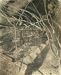 "https://flic.kr/p/DT1x7o | ""Northern Pike Spawning at Reinboldt Creek"" (block) Relief print. 2-2016.  © 2016 Erin K. Nolan  www.ErinkNolan.com:"