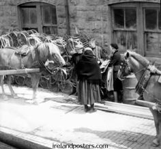 Old Ireland harbor scene at Kilronan 1954, Inis Mór Aran Island Co. Galway, elderly woman wearing a Galway shawl converses with a younger woman & man tending horses.