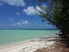 Middle Caico's deserted beach. Beautiful water! (Turks & Caico's)