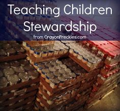 Stewardship Lessons for Teens - Stewardship of Life Institute