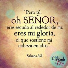 Pero Tú oh Señor, eres escudo alrededor de mi; mi gloria, y el que levanta mi cabeza. Salmos 3:3 /Frases ♥ Cristianas ♥