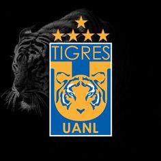 Campeones Apertura 2016