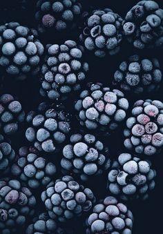 Alabama State Fruit | Blackberries