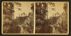 Never Forget: The Devil'z Punchbowl – 20,000 Freed Slavez Died After Being Forced Into Post Slavery Koncentration Kamp | ashiftinconsciousness