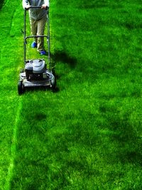 Everyone seems to want the picture perfect lawn, but perfect lawns don't just happen.  If you are starting your lawn from seed, you have a whole list of things that you will need to do to prepare the ground before you ever even start planting.