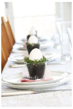 æg og karse