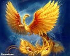 Phoenix or phenix (Greek: φοῖνιξ phoinix) is a long-lived bird that is cyclically regenerated or reborn. Associated with the sun, a phoenix obtains new life . Golden Phoenix, Phoenix Bird, Phoenix Animal, Phoenix Wings, Mythological Creatures, Mythical Creatures, Mythical Birds, Sea Creatures, Cross Paintings