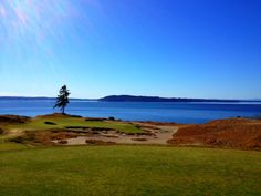 Chambers Bay Golf Course in University Place, WA