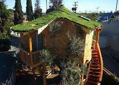 Tree Masters Tree House, Pete Nelson, Master Tree House Builder. office Fall City, Washington