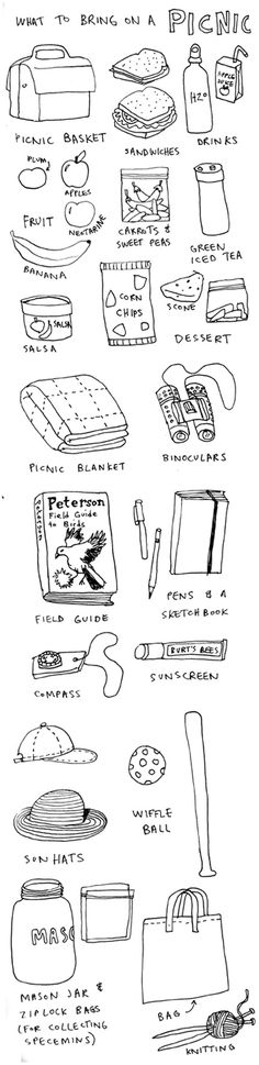 What to bring on a picnic illustrated list