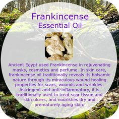 Ancient Egypt used Frankincense in rejuvenating masks, cosmetics and perfume. In skin care, frankincense oil reveals its balsamic nature through its miraculous wound healing properties for scars, wounds and wrinkles. Astringent and anti-inflammatory, it is traditionally used to treat scar tissue and skin ulcers, and nourishes dry and prematurely aging skin. Excellent immunostimulant properties; anti-depressant, euphoric qualities are used in aromatherapy to treat anxiety & nervous tension.