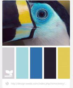 Palette de couleur de mon intérieur / salon