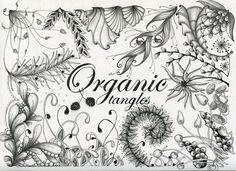 gardens zentangle tangles - Google Search