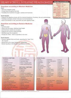 Health Sheet Heart/Small Intestine http://infinityflexibility.com/wp/