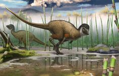 A Siberian fossil of a new dinosaur species suggests most were probably…