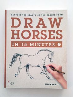 Draw Horses in 15 minutes // Diana Hand