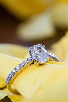 The engagement ring You Are Awesome, Wow Products, Engagements, Our Wedding, How To Memorize Things, Wedding Photography, In This Moment, Engagement Rings, Jewelry